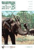 Elephant holding branch - Food & livelihoods