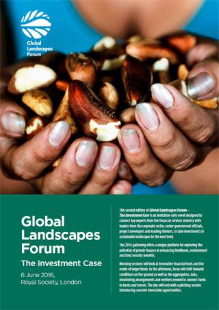 hands full of oil palm seeds - Finance