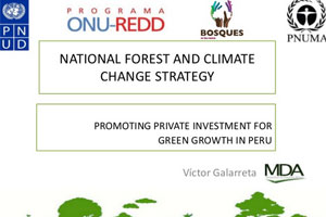 Promoting Private Investment for Green Growth in Peru- Víctor Galarreta