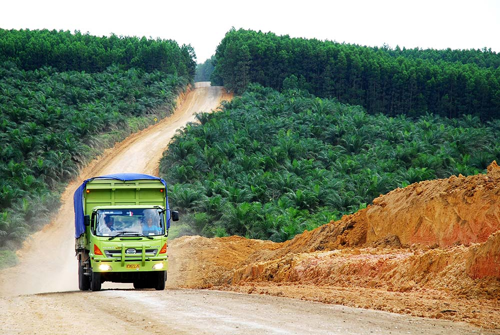 Sustainable Oil Palm Investments: Benefits of a Landscape Management Approach – CPI, IDH & Unilever