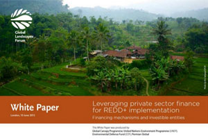 REDD+ & the private sector: Leveraging private sector finance for REDD+ implementation – UNEP, GCP, Environmental Defense Fund & Permian Global