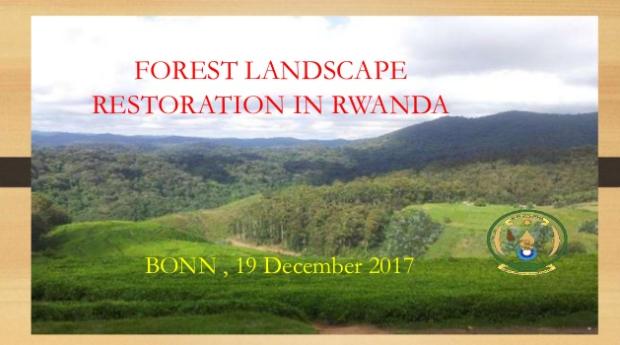 Forest Landscape Restoration in Rwanda
