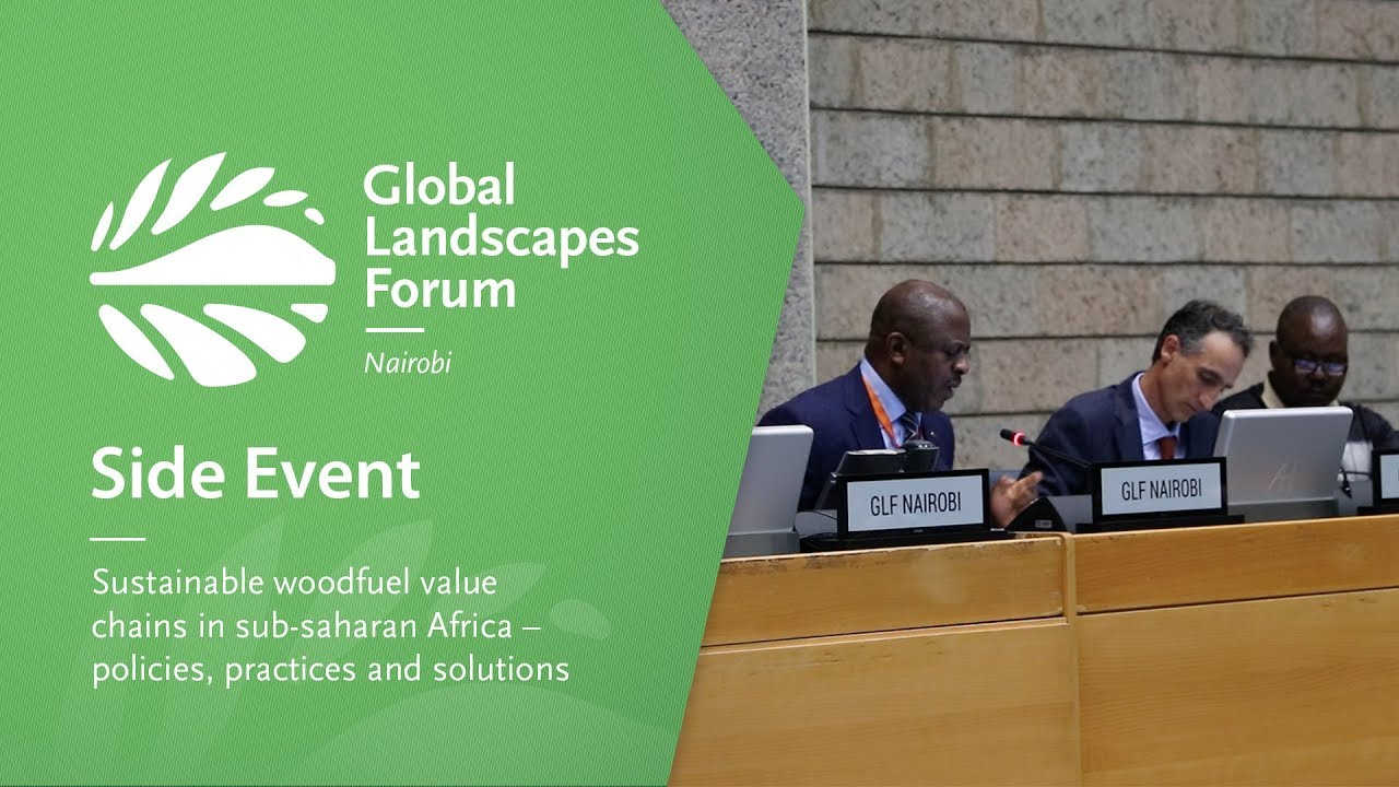 Side Event 3: Sustainable woodfuel value chains in sub-saharan Africa